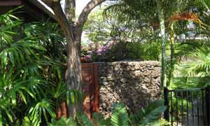 Вертикално озеленяване на декоративна подпорна стена